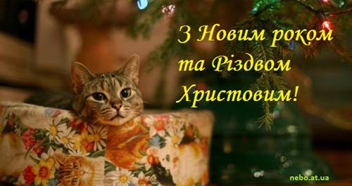 З Новим роком та Різдвом Христовим! вітальні листівки українською мовою. Киця, новорічна ялинка