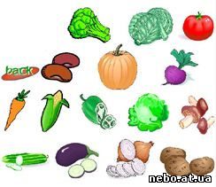 Vegetables (овочі) - флеш гра
