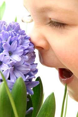 Діагностика захворювань по носі