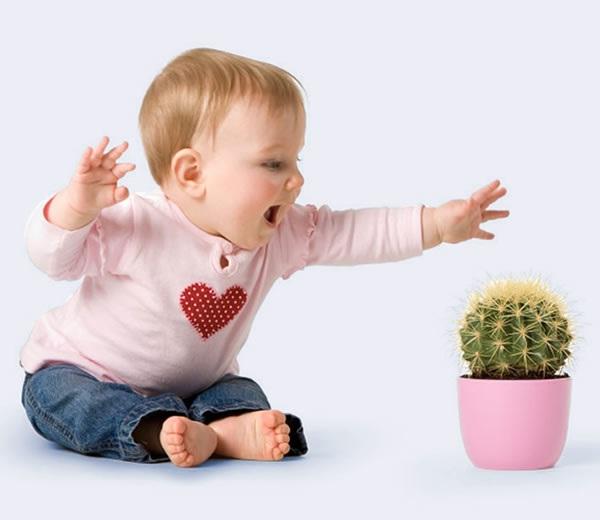 Безпека дітей. Діти і отруйні рослини