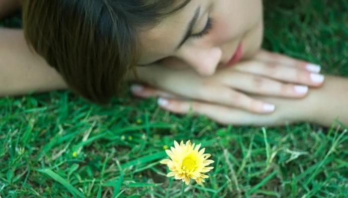 Трави від безсоння