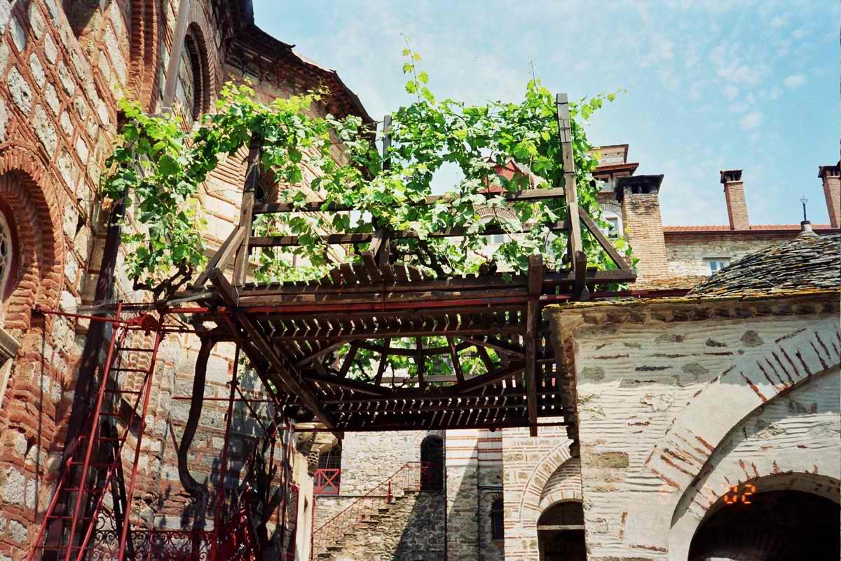 Виноградна Лоза Симеона Мироточивого, Афон, Хіландар - надія проти безпліддя