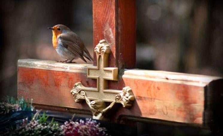 Як поводитися на цвинтарі. Як поминати покійних