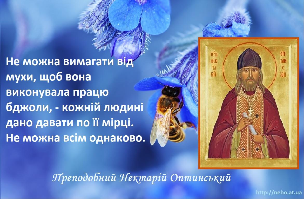 Православні цитати. Преподобний Нектарій Оптинський. Про осуд