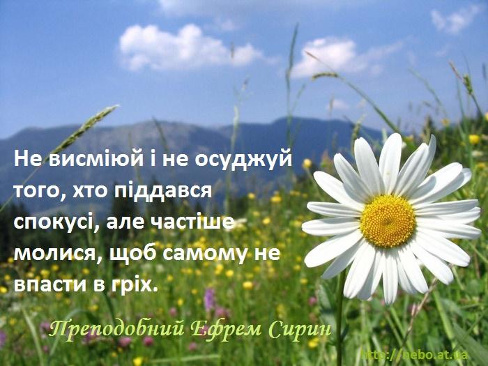 Православні цитати. Преподобний Єфрем Сирин. Про осуд
