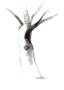 Намалюй дерево: рисунковий тест. Дізнайтеся, чи надійна ви людина